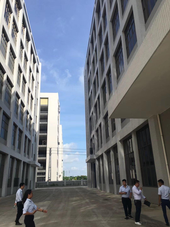 西乡鹤洲洲石路边新兴工业园3楼2000平厂房出租