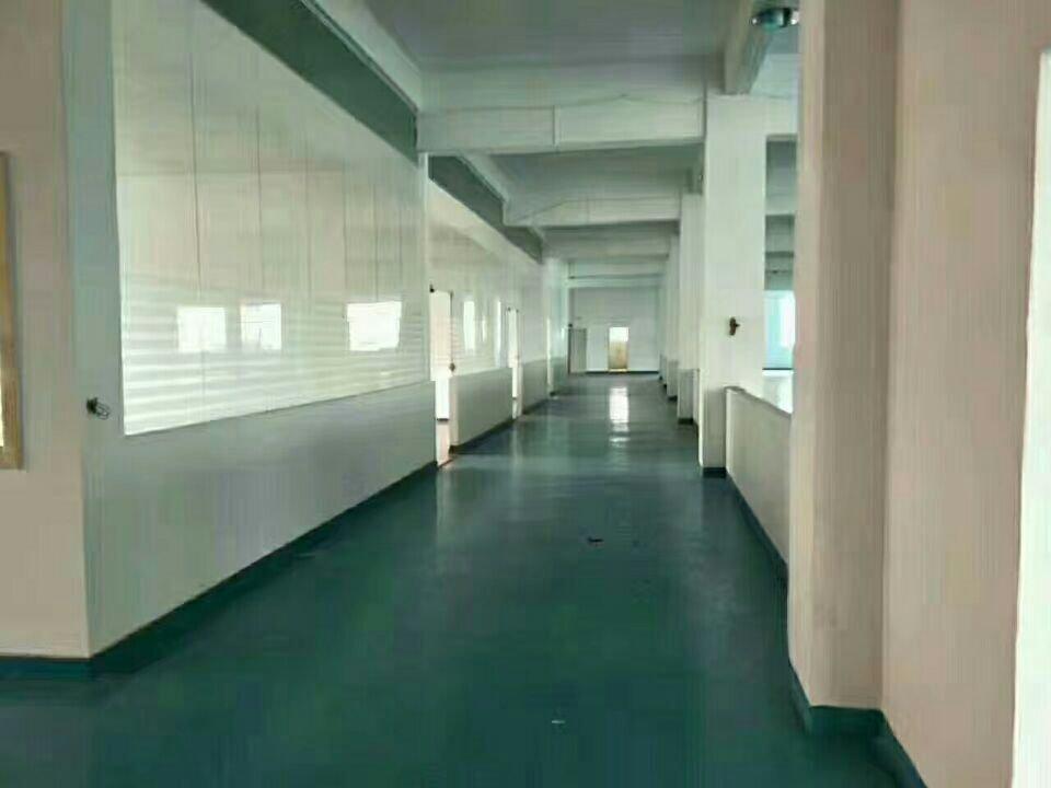 松岗沙浦围原房东独院1-3层3800平方厂房出租,没公摊-图7