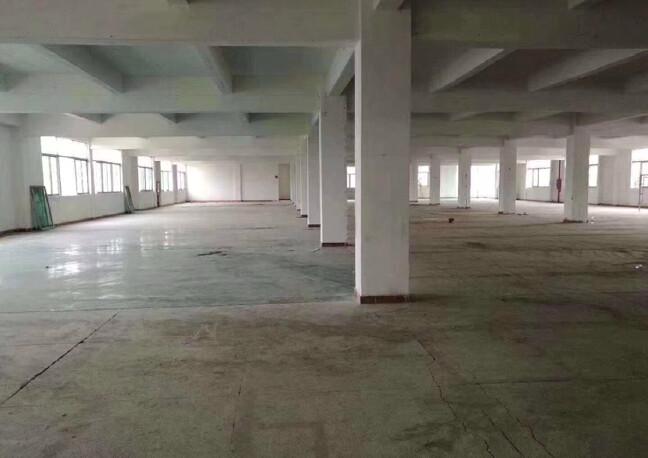 宝安松岗沙浦围1万平独门独院厂房仓库出租(大小可分租)大电梯