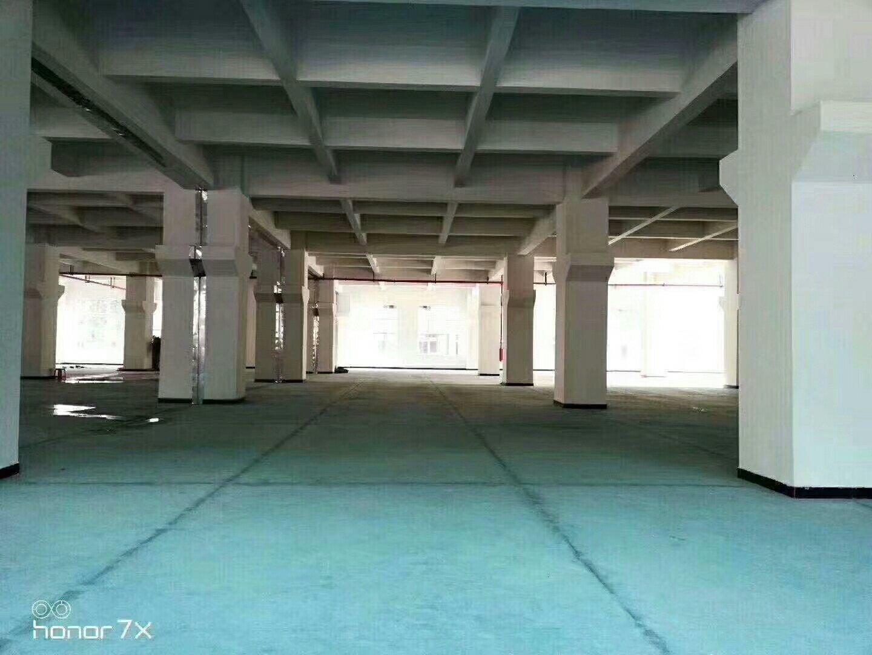 石岩水田花园式三楼1200平精装修厂房出租-图5