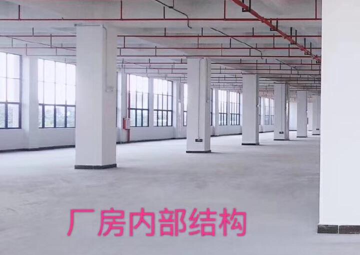 国有红本厂房,写字楼,东莞常平项目新推出一期,二期小面积高层图片4