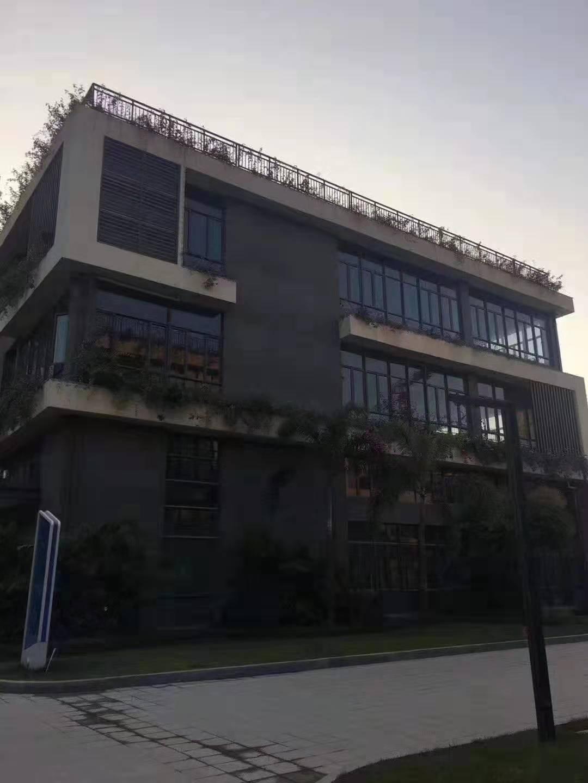 惠州红本厂房1000平起售,独立红本,可办按揭
