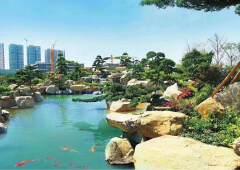 惠州市航母级国有产权大小面积分割出售
