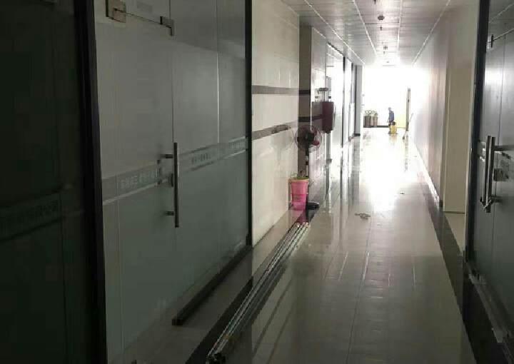 新出私人房东1-2-3-4层的独立办公楼共2200平图片2