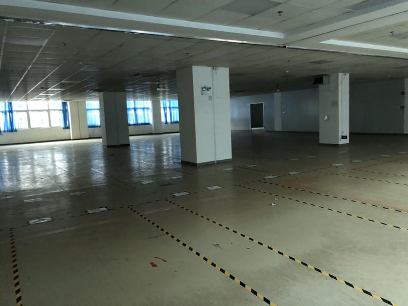 西丽白芒楼上2300平村委厂房直租