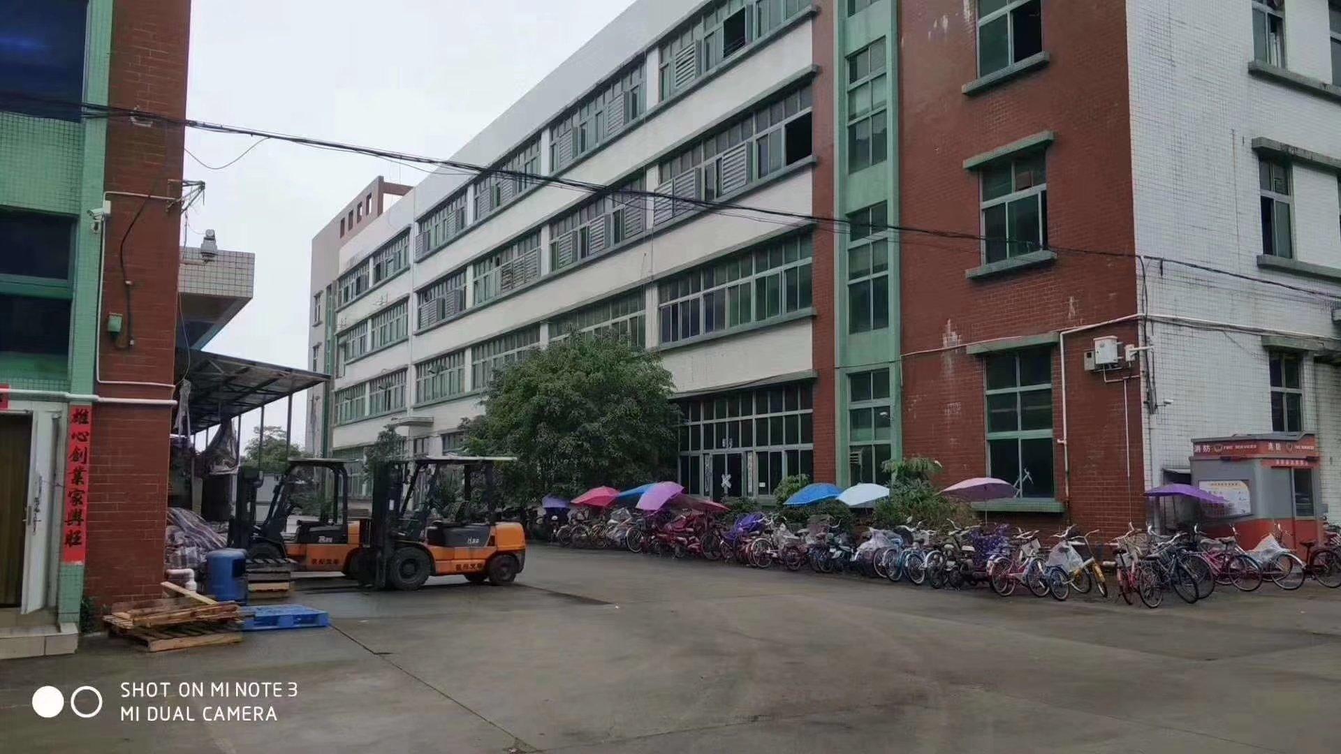 龙岗工业园楼上3600平方厂房出租-图3