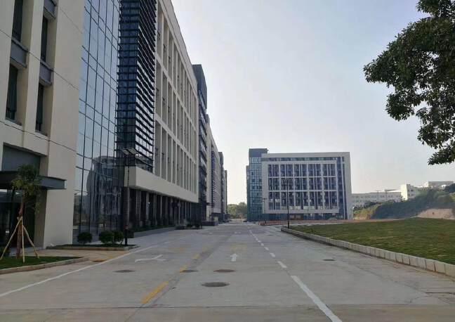 松岗大田洋新出楼上2200平方精装修厂房