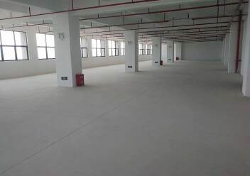观澜梅观高速口两公里红本一楼1300平带喷淋厂房出租图片2