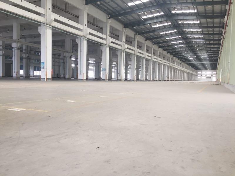 坪山坑梓新出工业园两万三千平钢构8米高