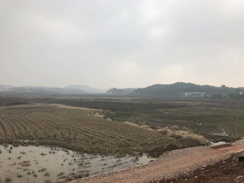 安徽合肥舒城250亩国有指标工业土地厂房出售可分割