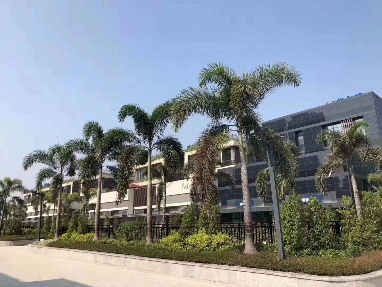 深圳沙井新出国有证厂房10000平方,房东急售。