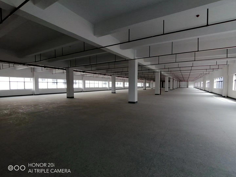 惠州仲恺高新区新出原房东标准独院厂房6000平方-图4