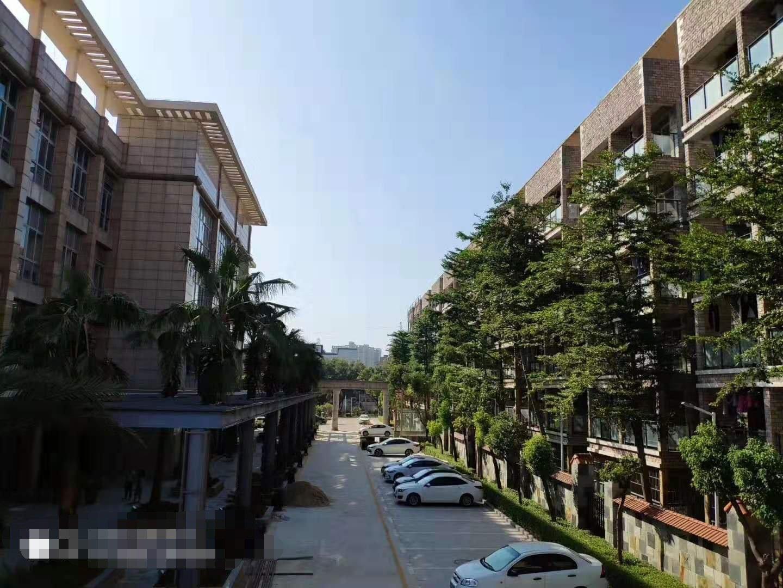深圳北附近惠州市全新花园式厂房800平起可分割出售