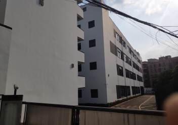 龙华元芬地铁站独院厂房招租总面积6000平方精装修图片1