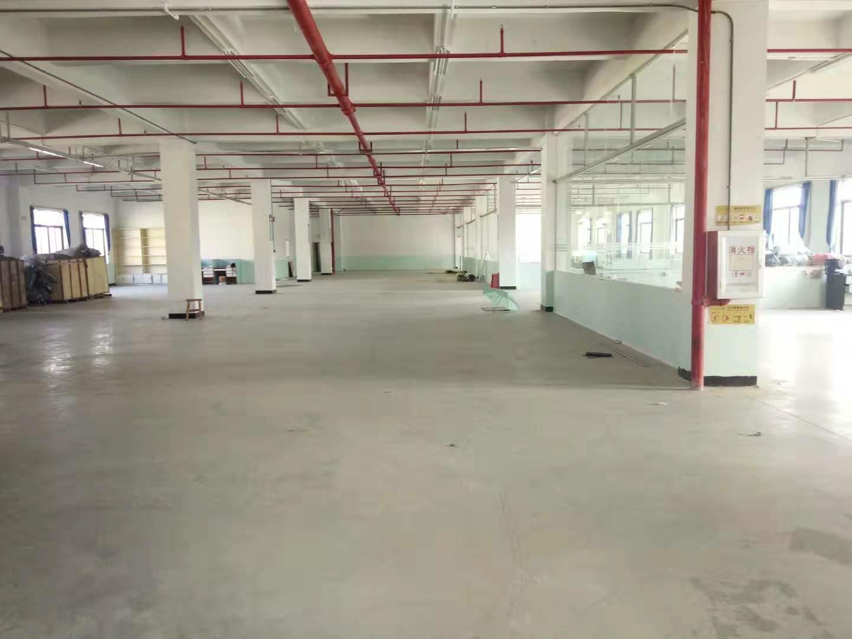 惠阳区新圩镇原房东现成装修楼上厂房1500平带红本价格便宜-图3