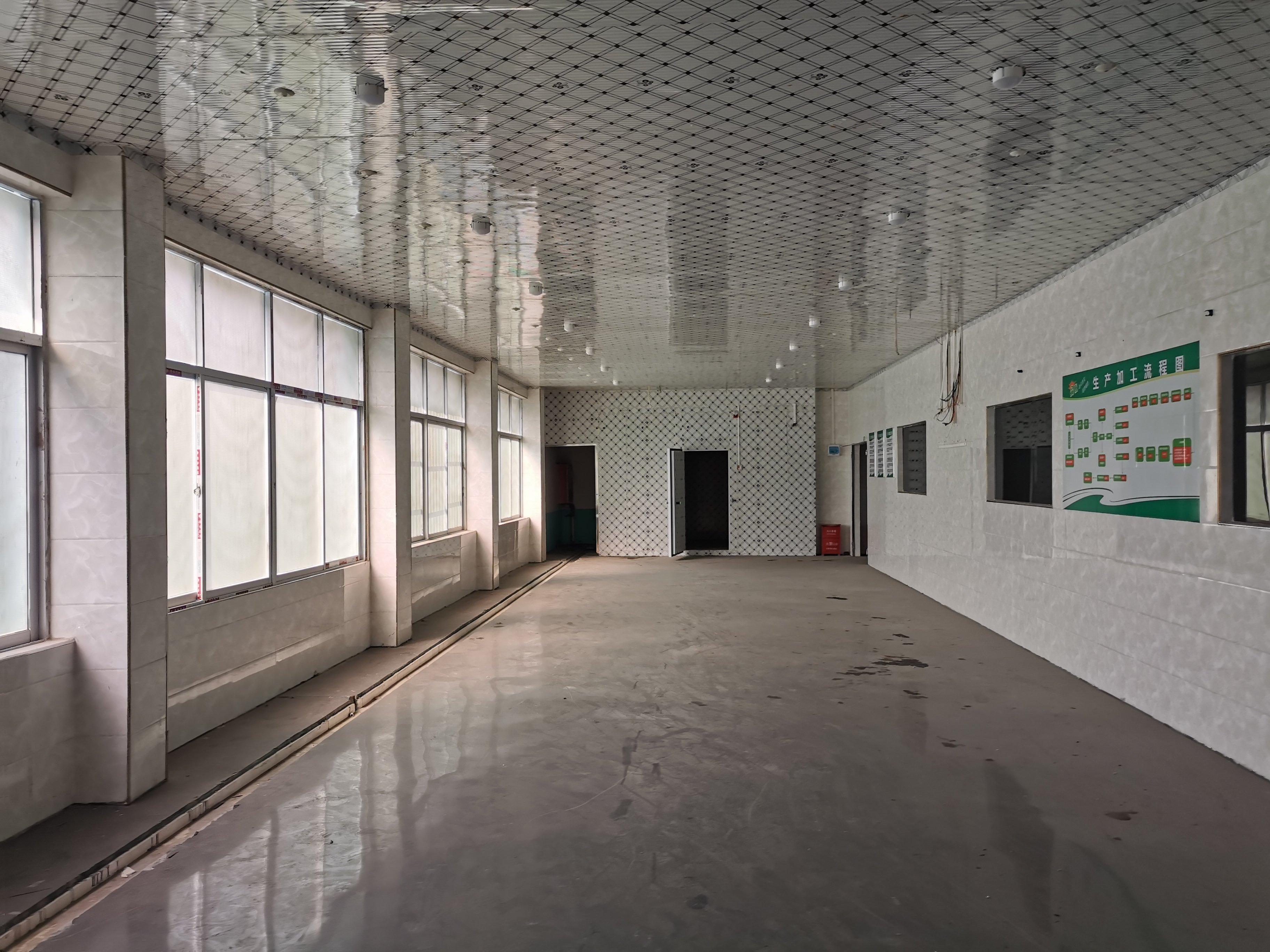 福永107国道边上原房东独门独院厂房1280平招租-图3