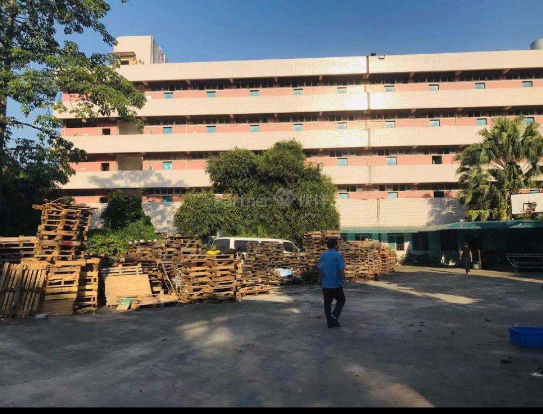 惠州市新出形象超好小独院厂房出租