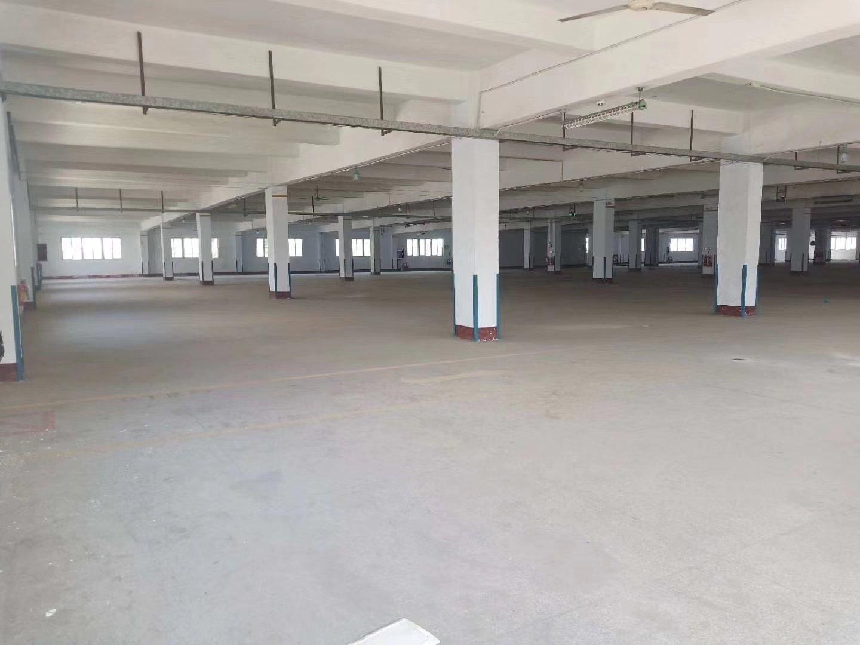 中山市区双证单一层厂房出售-图3