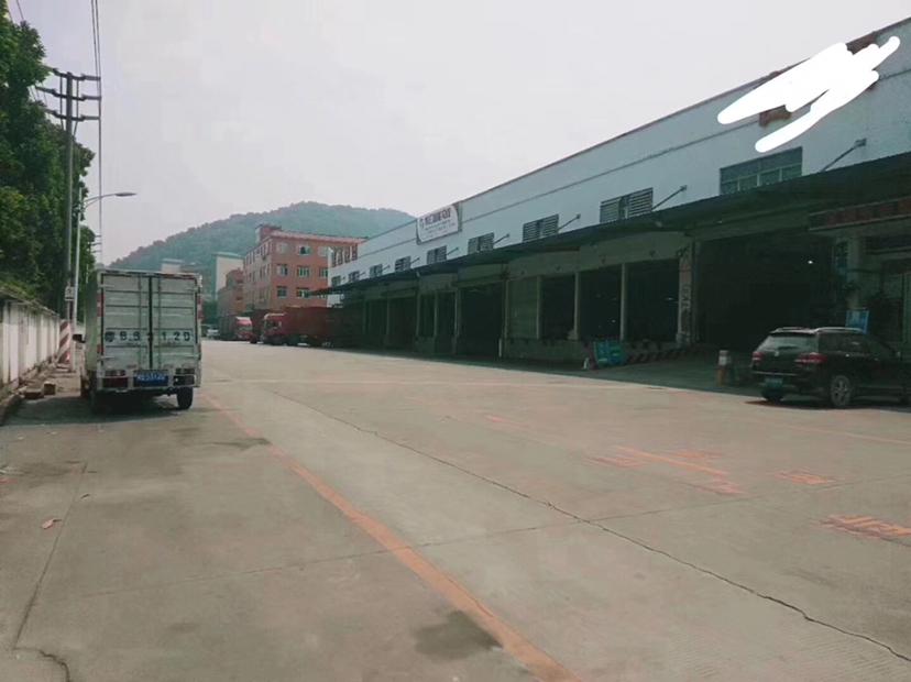 光明主路边上物流标准仓库出租面积7000平米空地卸货平台