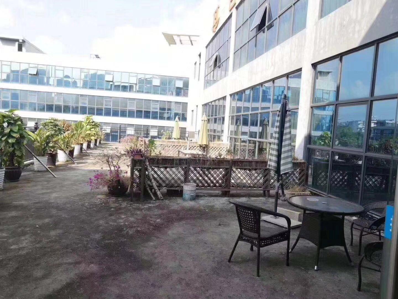 龙华清湖高端写字楼电子商务、仓库等面积6000平,56平起分
