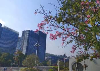 广州海珠区精装写字楼带公共会议室图片1