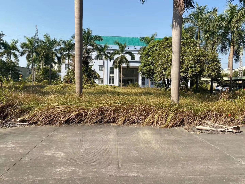 常平镇带红本土地证钢构独院20280平方独院高度10米-图3
