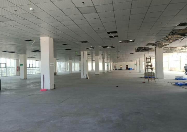 广州市科学城生物制药电商类办公楼租图片4