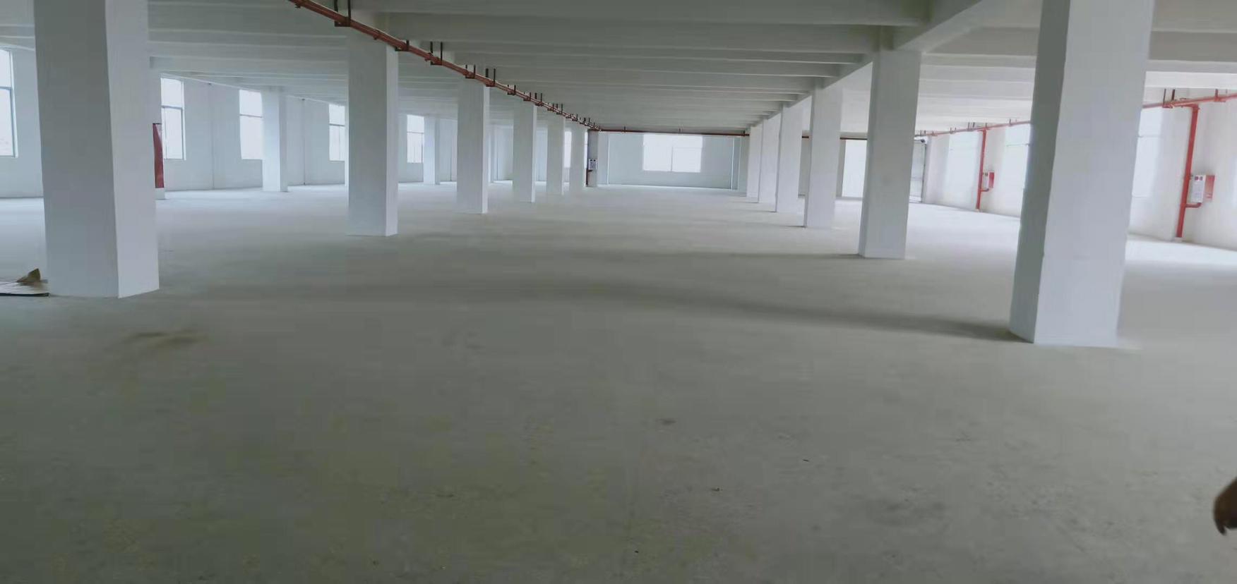 深圳成熟工业园1200平带独立产权证单层厂房出售