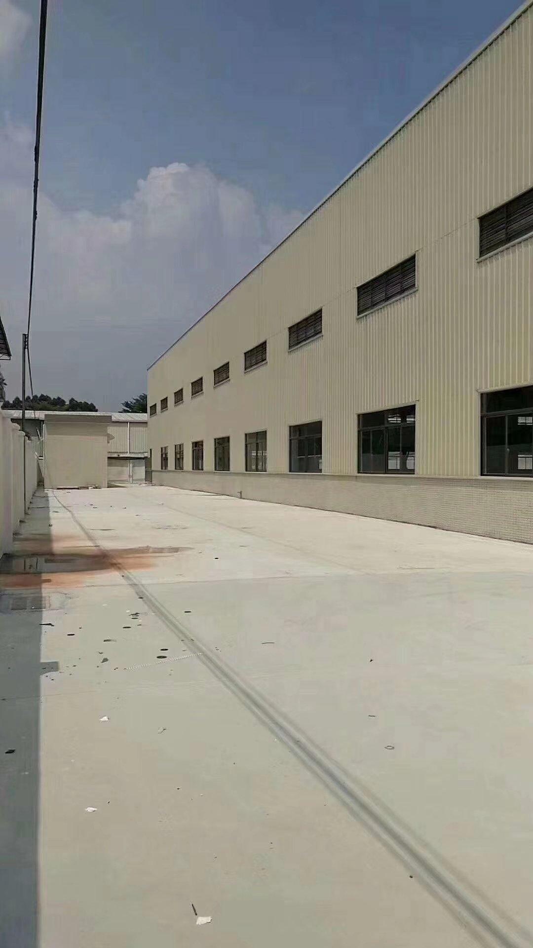 惠东县白花镇独院钢构厂房2880平方13元