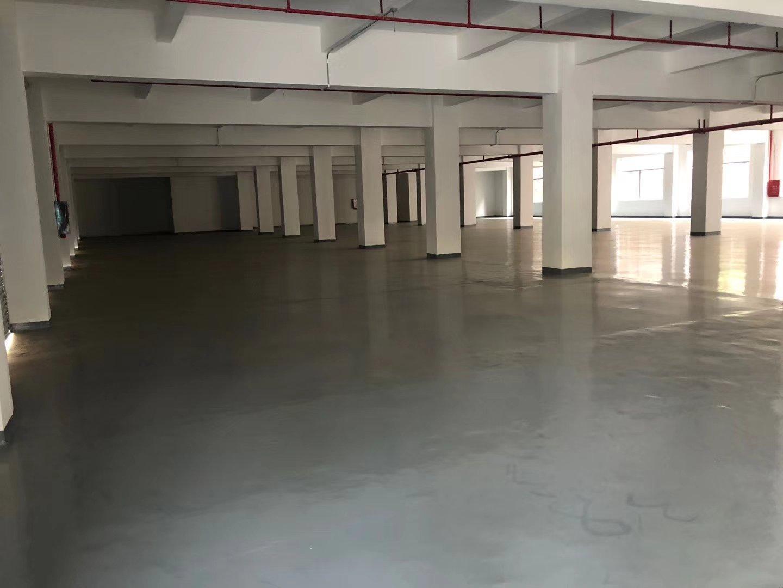 凤岗可签12年合同,适合电商,培训学业厂房12500平出租-图4