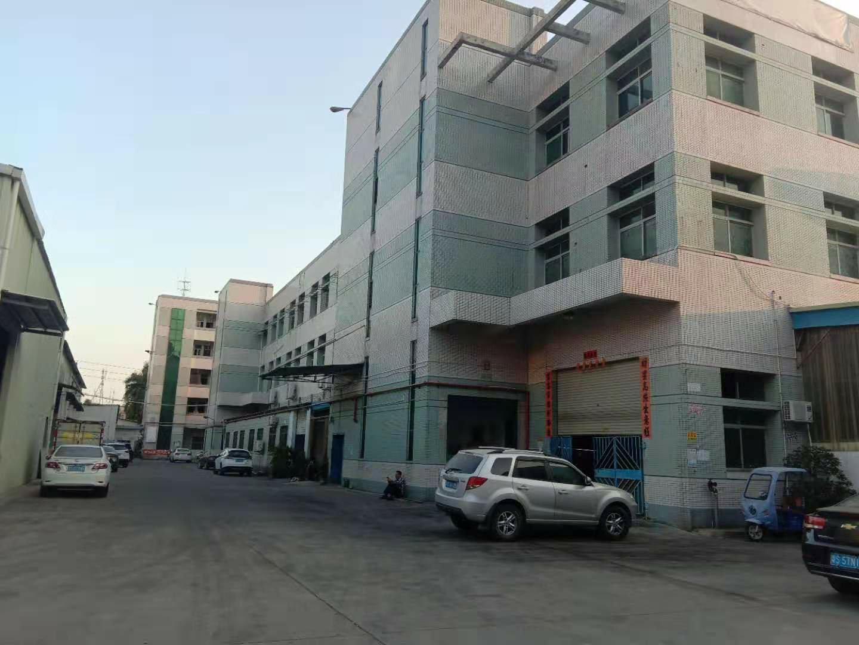 横沥原房东标准厂房三楼1300平方