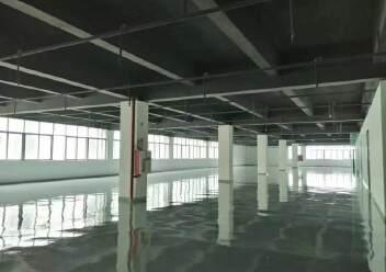 龙华上塘原房东实际面积厂房600平方出租图片1