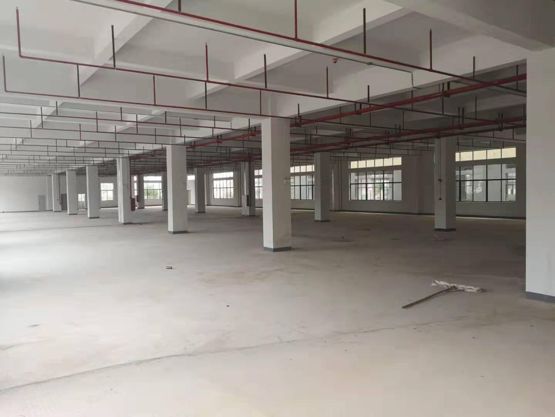 惠州市平潭镇全新独栋厂房12000平方价格好谈证件齐全