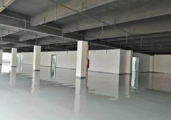龙华上塘原房东实际面积厂房600平方出租图片4