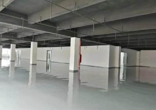 龙华上塘原房东实际面积厂房600平方出租