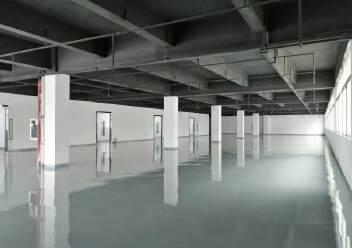 龙华上塘原房东实际面积厂房600平方出租图片3
