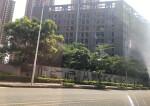 深圳坪山周边红本工业园厂房出售300平起分,10年按揭