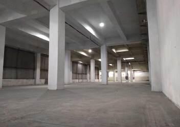 观澜观光路边可做仓库、冷库6000平方,报价38块,可谈,无图片4
