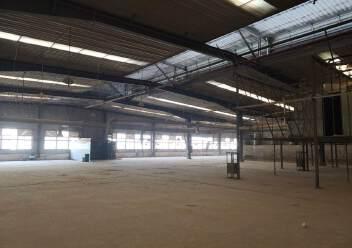鹤山市新出标准厂房12000方现成家具环评打磨房粉尘处理线图片5