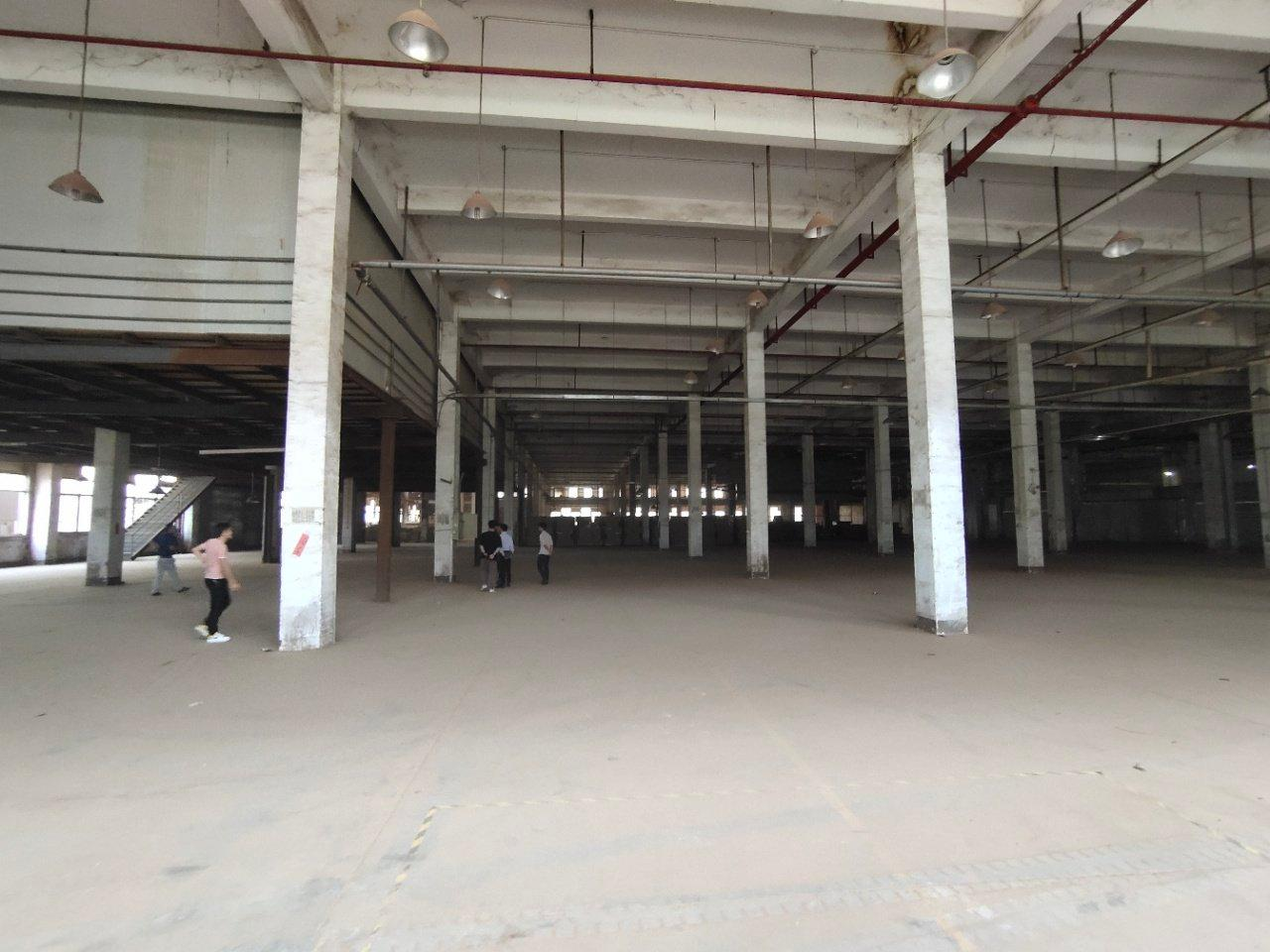 鹤山市新出标准厂房12000方现成家具环评打磨房粉尘处理线-图2