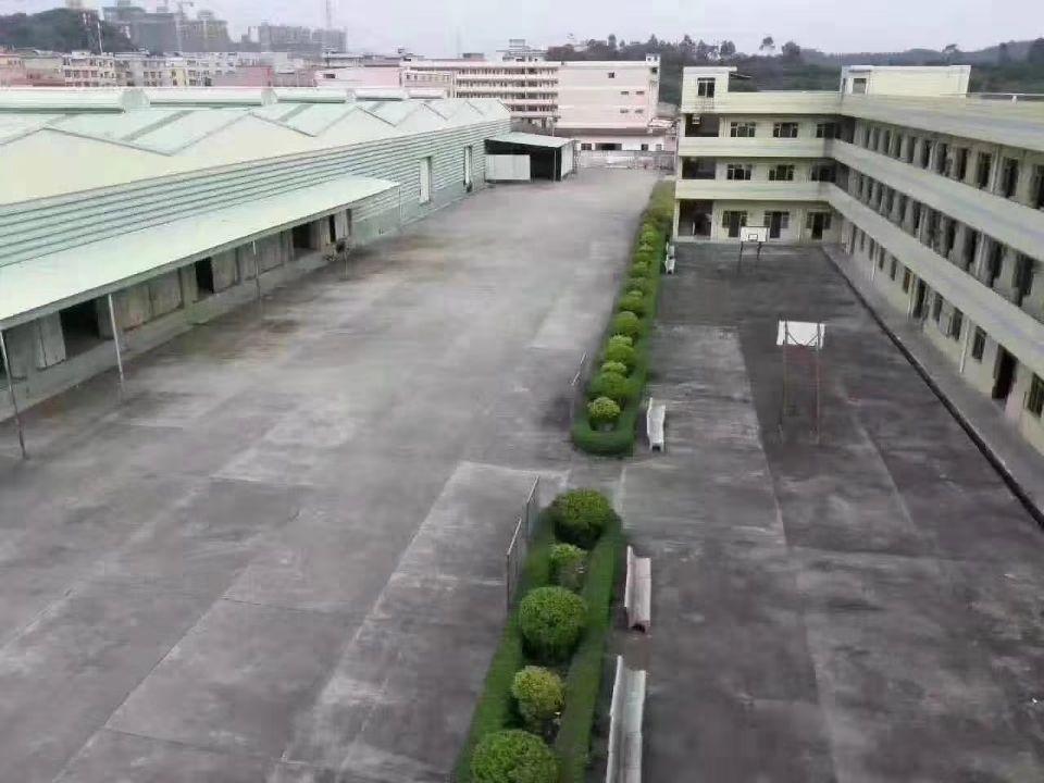 大岭山单一层独院仓库出租滴水9米带卸货平台,分租2300平方