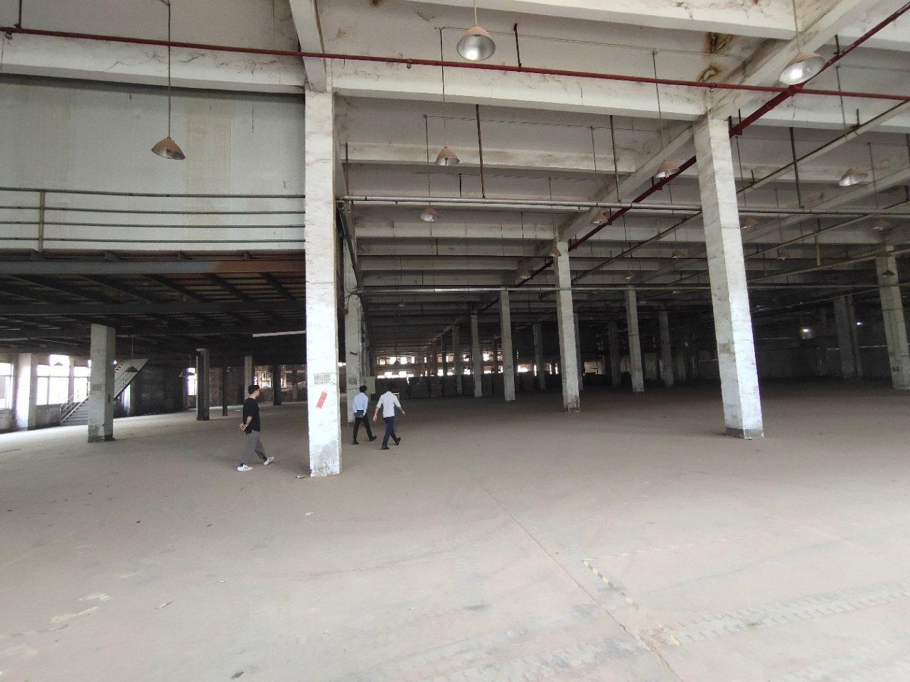 鹤山市新出标准厂房12000方现成家具环评打磨房粉尘处理线-图9