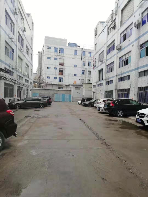 西乡鹤洲,立交桥旁工业园楼上标准厂房900平方出租