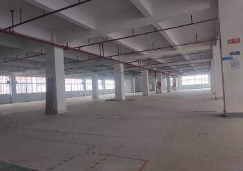 石岩福龙路口红本独院1/5层12500平方仓库出租,可分租图片4