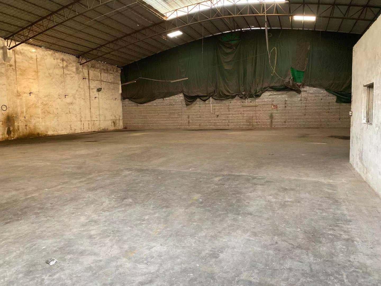 海珠区南洲新出一楼仓库800平,高度7米,小独院