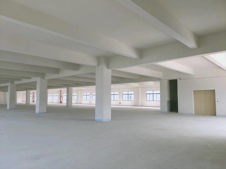 中山南朗全新标准厂房价格便宜-图3