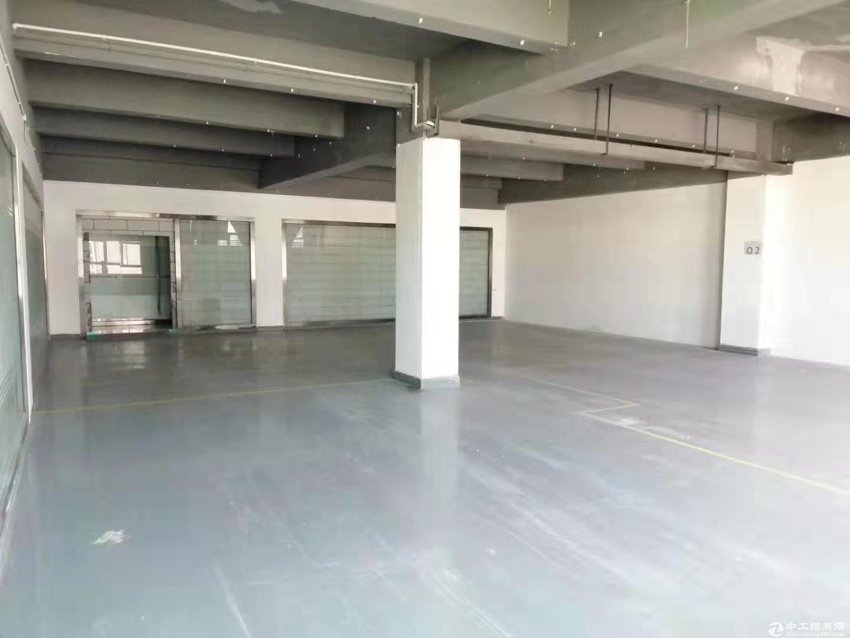 南山新出楼上200平红本厂房招租