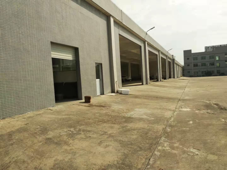 惠东白花镇原房东标准楼房一楼仓库两百四十平