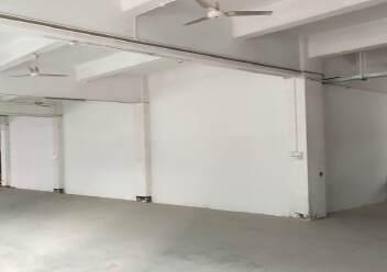 观澜原房东独门独院红本面积4100平厂房出租图片6