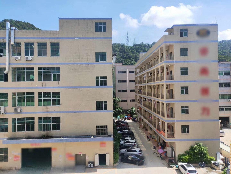 西乡勒竹角新出楼上三楼2200平厂房出租